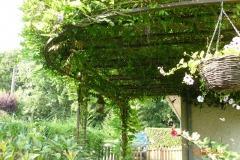 Support pour plante grimpante